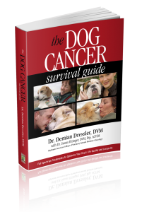 Dog Cancer Survival Guide paperback version