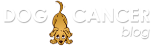 Dog Cancer Blog Logo