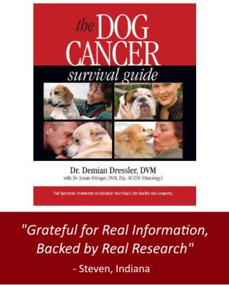 Buy the Dog Cancer Survival Guide in the Store